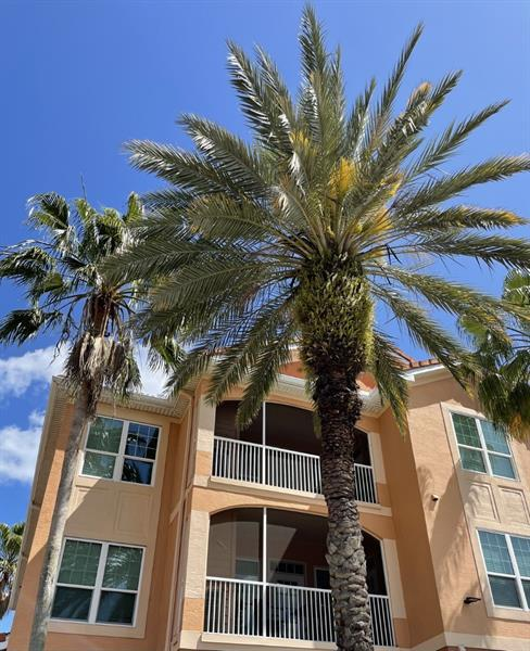 Image for property 5000 CULBREATH KEY WAY 1318, TAMPA, FL 33611