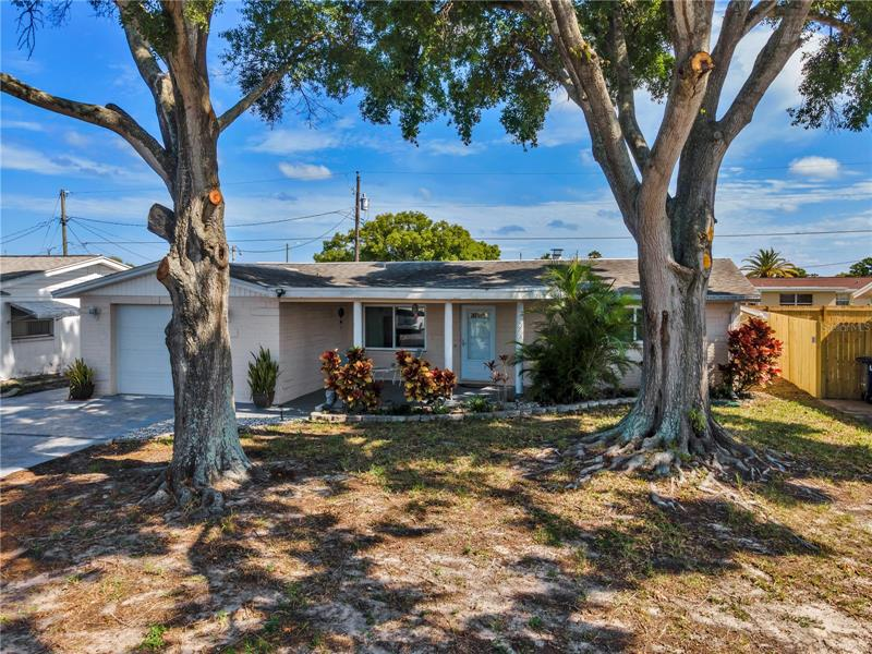 Image for property 4019 CLUSTER DRIVE, HOLIDAY, FL 34691