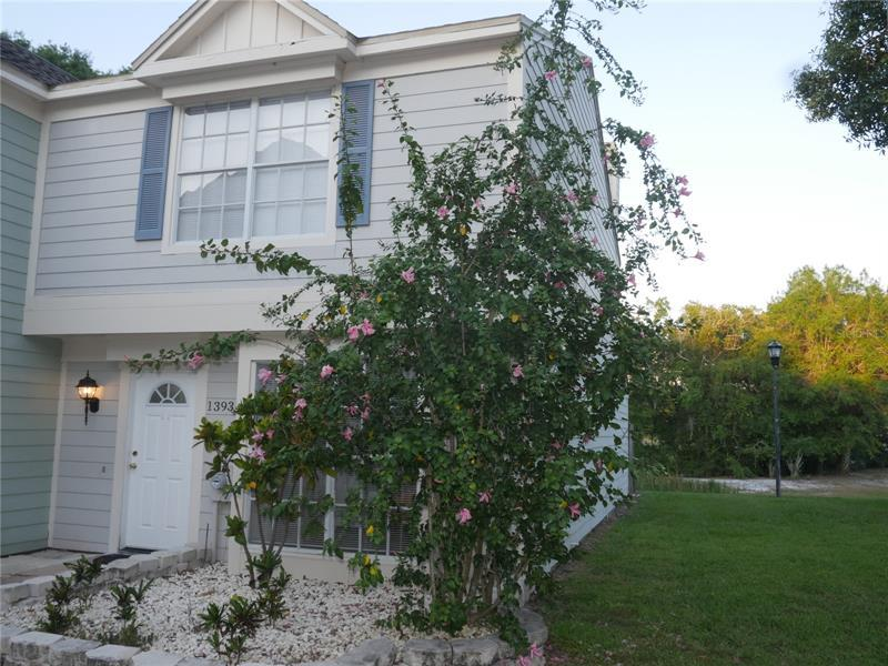 Image for property 13931 FLETCHERS MILL DRIVE, TAMPA, FL 33613