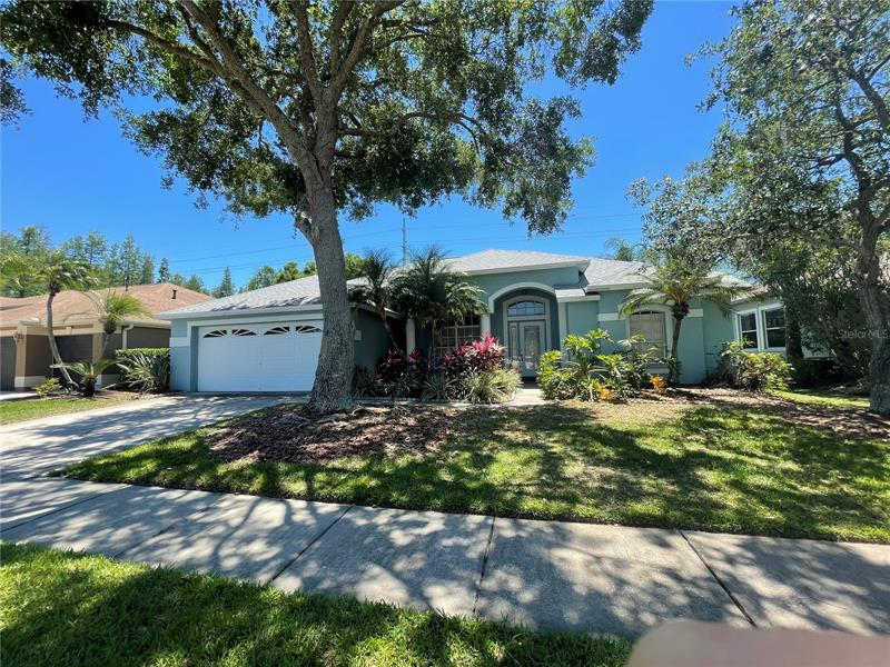 Image for property 12402 SEABROOK DRIVE, TAMPA, FL 33626