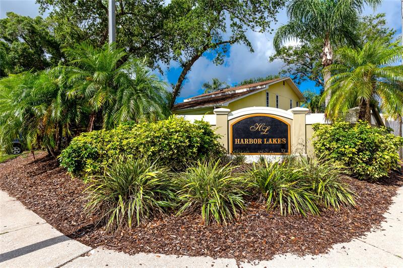 Image for property 101 WINDING WILLOW DRIVE, PALM HARBOR, FL 34683
