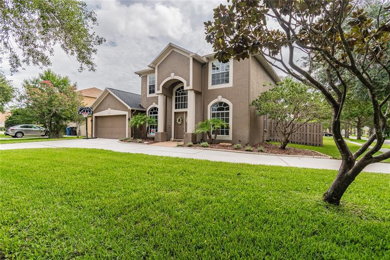 Image for property 19116 CHERRY ROSE CIRCLE, LUTZ, FL 33558