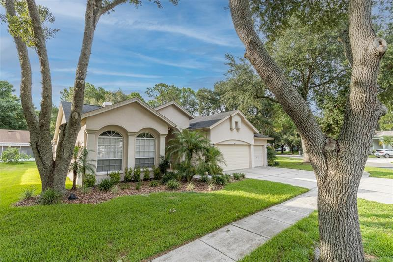 Image for property 9610 NORCHESTER, TAMPA, FL 33647