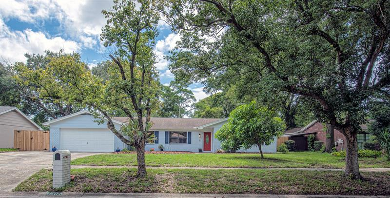 Image for property 13506 LITTLE LAKE PLACE, TAMPA, FL 33613
